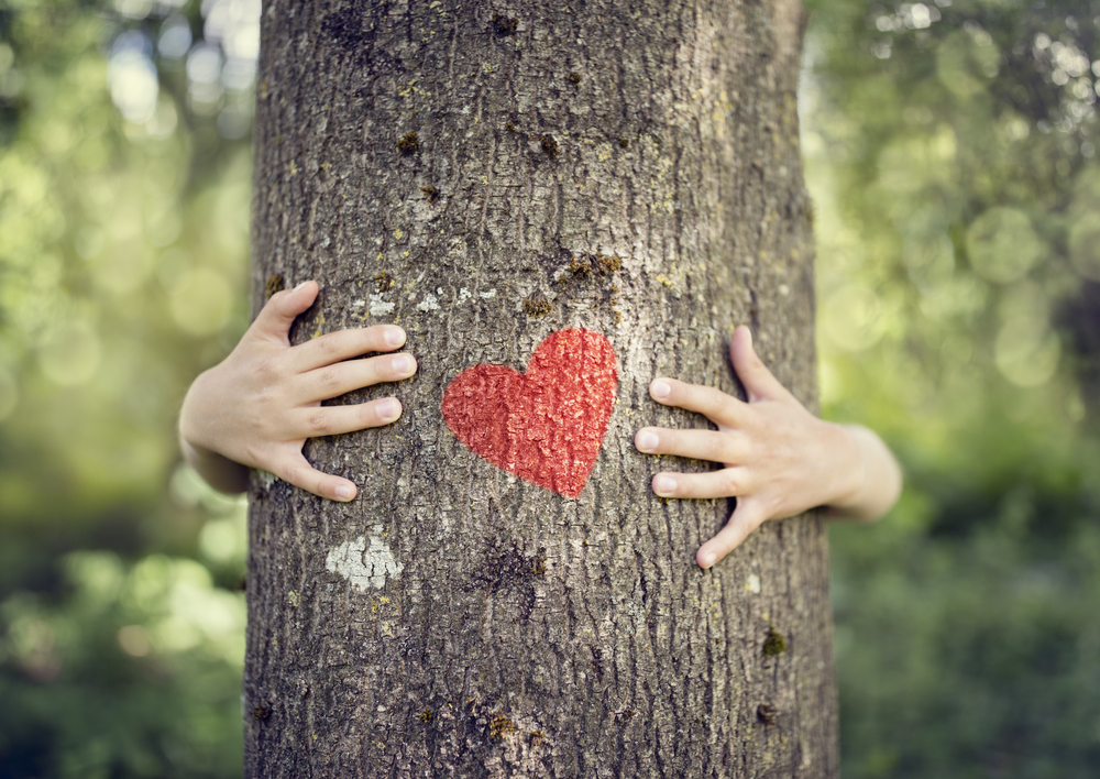 © shutterstock tree hugging